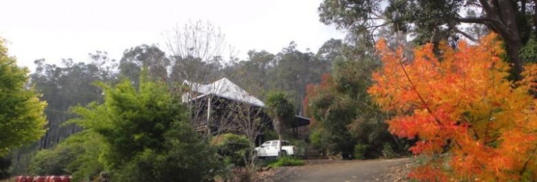 Farm May 2011